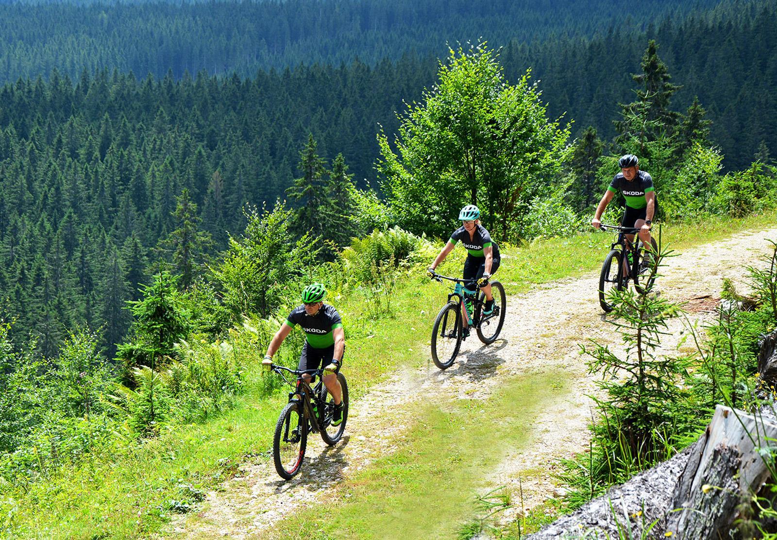 Mountain Biking Camp Slovenia   Riding Experience   LIFE ...